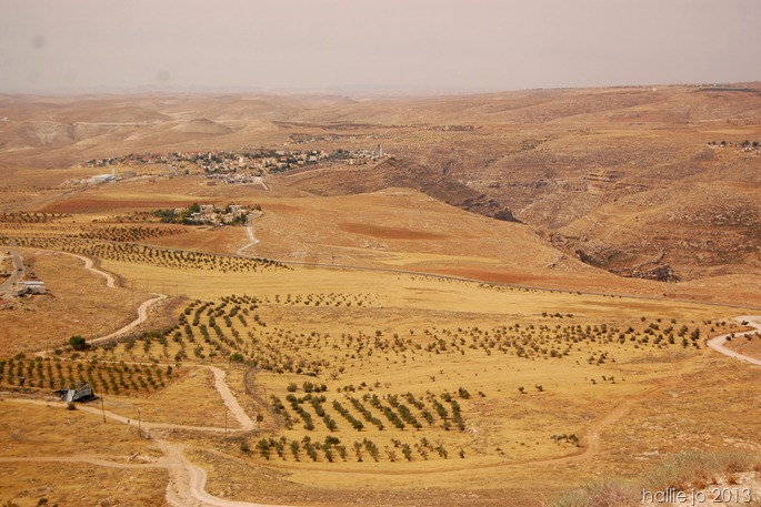 Herodian9