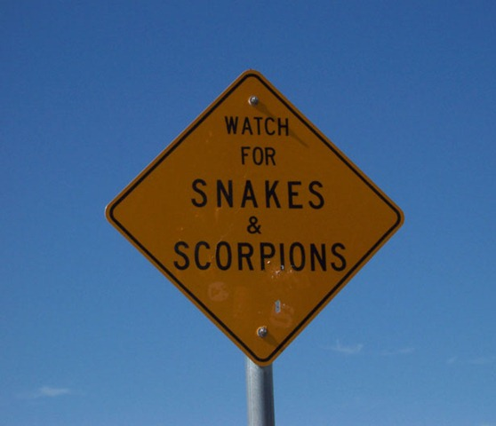 snakes-and-scorpions-73141289450846KIF