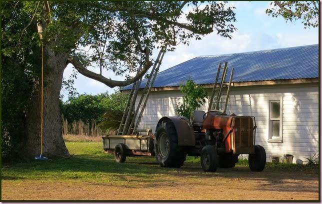 tractorIMG_9542