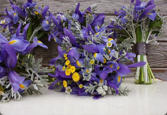 iris 526550_10151136490415152_2002153991_n flora organica designs