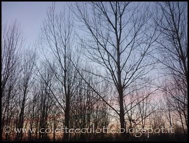 Passeggiata al Dosolo - 1 gennaio 2013 (69)