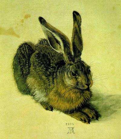 Dürer, Albrecht (6).jpg
