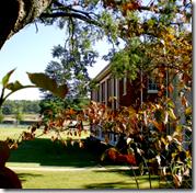 [College campus]