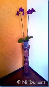 Pedestal-reciclado-02-8