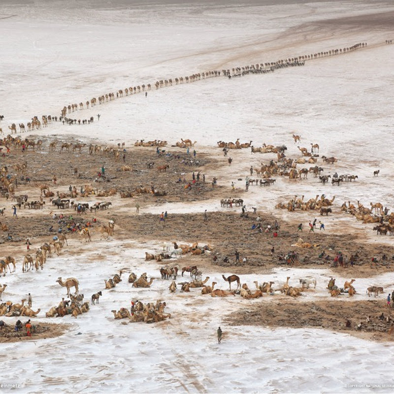 Africa From Above: By George Steinmetz