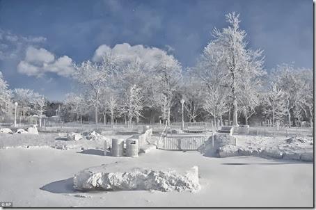 poze ger arctic SUA