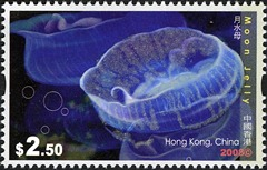 HK023-08