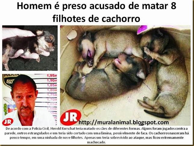 Homem é preso acusado de matar 8 filhotes