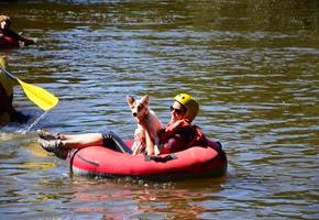 Pets Adventure 18 (141_1) (49)