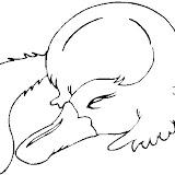 platypus2.jpg
