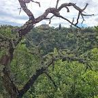 Les Gorges du Granzon