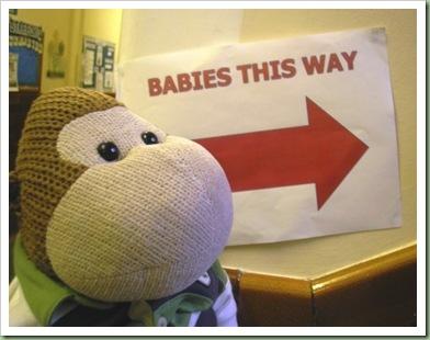 Babies on Loan 2