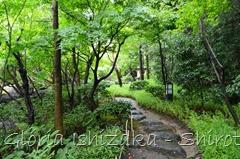 49 - Glória Ishizaka - Shirotori Garden