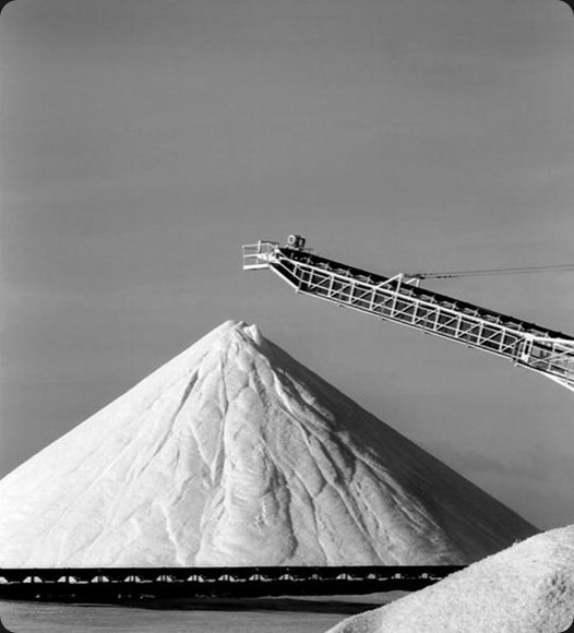 Salt Harvest No 3- Bonair