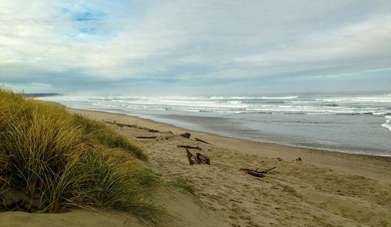Bullards Beach iPhone (9 of 9)