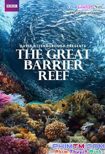 Khám Phá Rạn San Hô Vĩ Đại Với David Attenborough - Bbc: Great Barrier Reef With David Attenborough