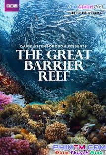 Khám Phá Rạn San Hô Vĩ Đại Với David Attenborough - Bbc: Great Barrier Reef With David Attenborough Tập 3 4 Cuối