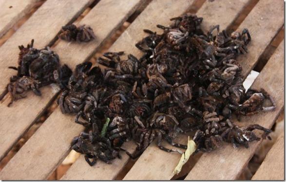 spider-food-cambodia-17