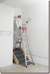Werner MT 17 Multi Ladder 4