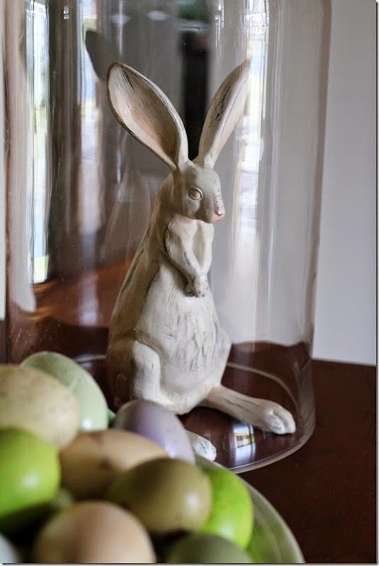 bunnyunderglass