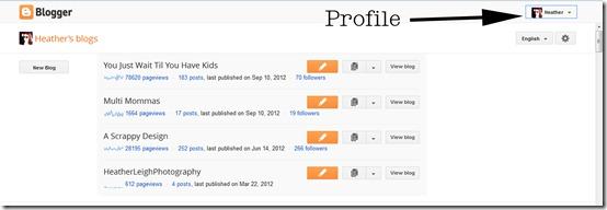 Blogger Profile 1