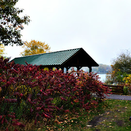 Covered Autumn Bridge by Chandra Whitfield - Buildings & Architecture Bridges & Suspended Structures ( water, leafs, nature, colors, bridge, photography, covered )