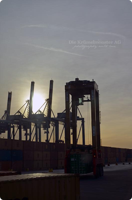 Bremerhavenrundfahrt 261113 (6)
