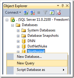 Creating a new query for Northwind database.