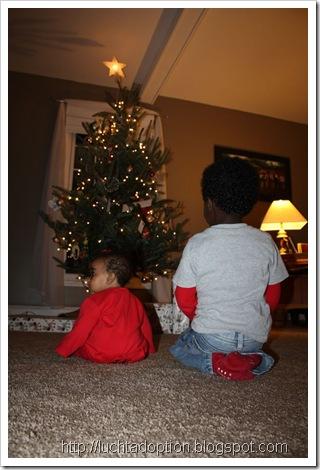 December 2012 056