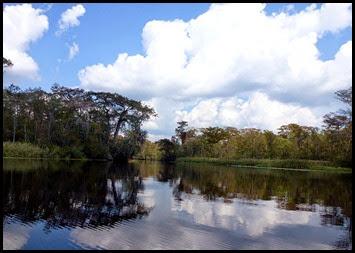 05c - Beautiful Day Along the Waccamaw River