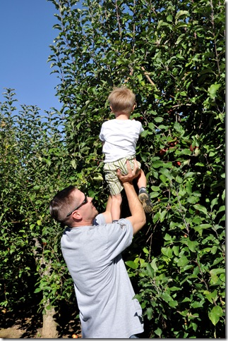 Finley and Daddy Picking Apple