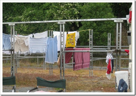 Wash day in camp at Kaikoura