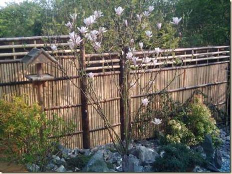 Decoración de Jardines con Cañas3
