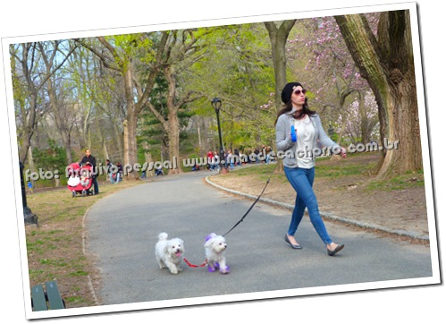 Passear no Central Park é um dos programas disponíveis para as Mães de Cachorro de New York!