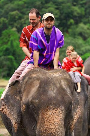 Atractii Thailanda: Elephant trekking