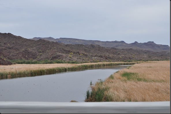 04-25-12 3 Colorado River 06