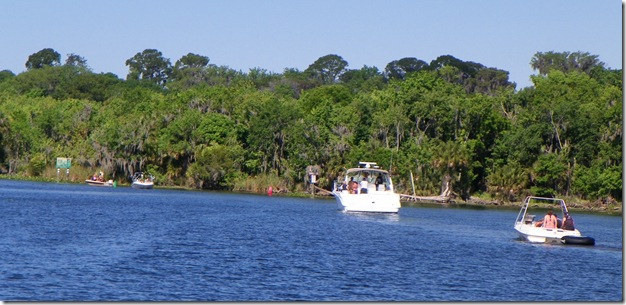 St Johns River 066cs