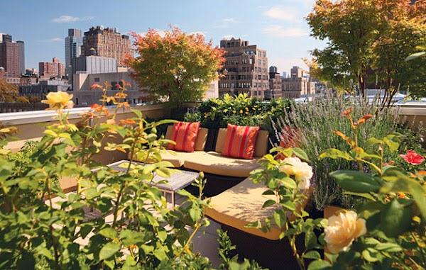 Bàn ghế ngồi nói chuyện trên sân thượng