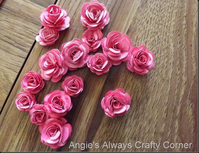 blog roses 023