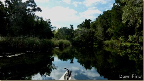 Chassahowitza River canoeing_036