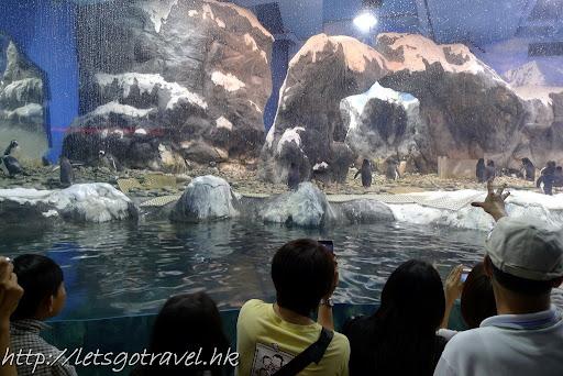20100827Kaohsiung433.jpg