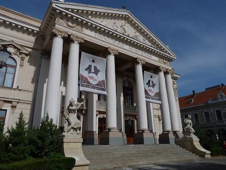 Obiective turistice Oradea: Teatrul de Stat