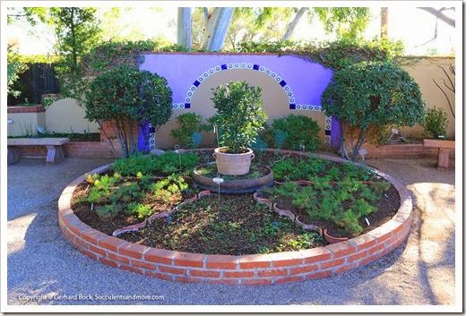 131203_TucsonBotanicalGarden_009
