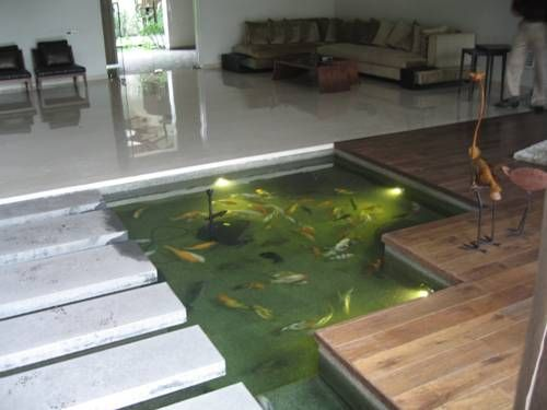 Koi pool in the house okeanos blog luxury indoor pond for Indoor koi fish pond