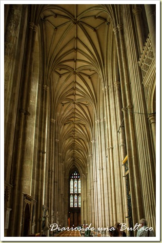 Canterbury-40