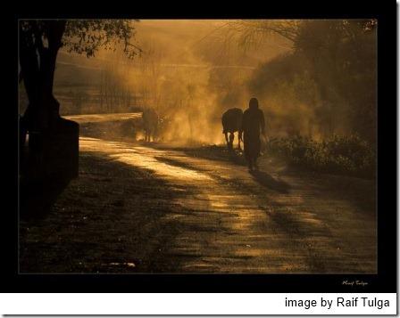dusty-road-by-raif-tulga