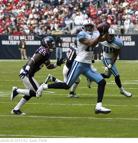 'Houston Texans vs. Tennessee Titans' photo (c) 2010, AJ  Guel - license: http://creativecommons.org/licenses/by/2.0/