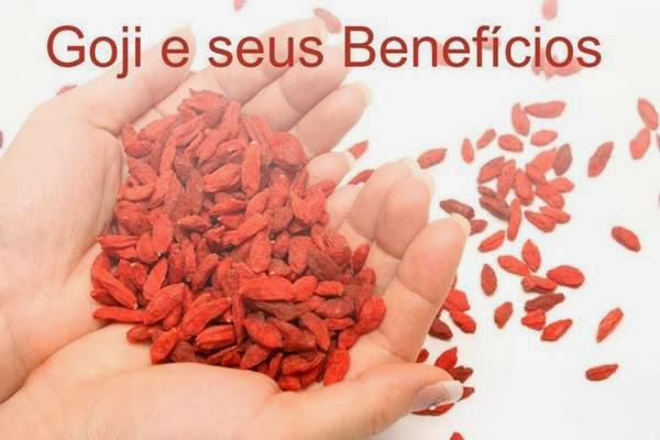benefícios-do-goji-berry