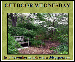 Outdoor-Wednesday-button_thumb1
