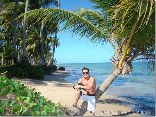 Praia do Patacho na Rota Ecológica de Alagoas